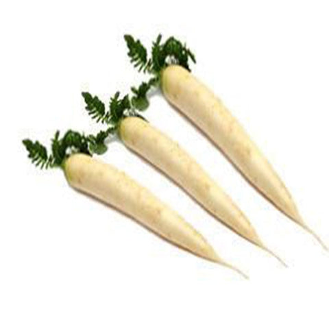 Raddish long white seeds (Hybrid)