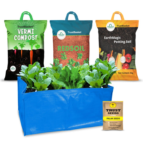 Best Vegetable & Gardening Kit in India - TrustBasket EasyGro Palak Growing Kit (Grow bag, Soil, manure, Seeds)