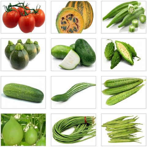 Seeds Combo Kits - Summer Vegetable Seeds Kit (Set of 12 Packets)