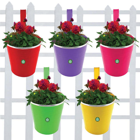 DECORATIVE/CONTEMPORARY PLANT POTS - Plain Round Railing Planters - Set of 5 (Green, Yellow, Magenta, Red, Purple)