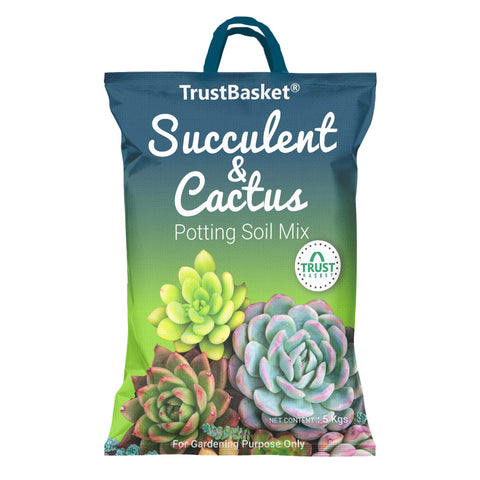 Best Plant Food Products in India - Succulent and Cactus Potting Soil Mix