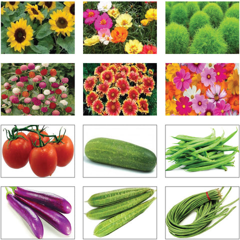 Seeds Combo Kits - Summer Vegetable and Flower Seeds Kit (Set of 12 Packets)