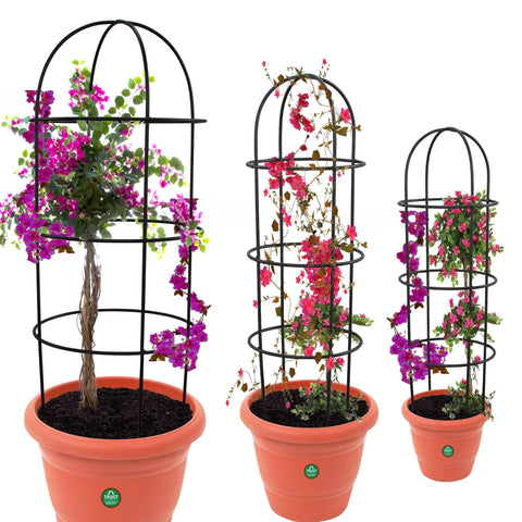 Valentines Day Offer - Buy 2 Get 20% Off - TrustBasket Obelisk trellis for Plant Support - Set of 3