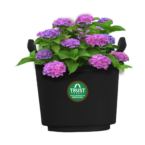 Vertical Gardening Pouches - Extra Large (Set of 10) - Black