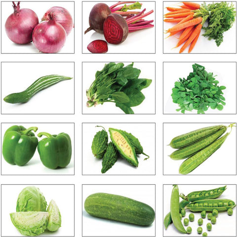 Seeds Combo Kits - Winter Vegetable Seeds Kit (Set of 12 Packets)