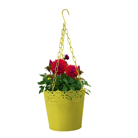 Hanging basket Lace Finish Yellow