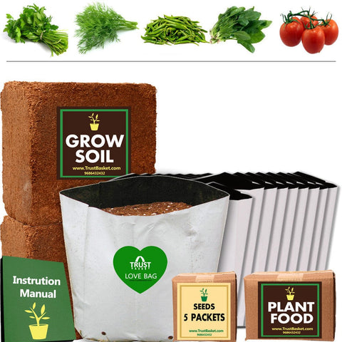TrustBasket Economy Super Saver Grow Kit (Parsley, Dill, Green Chilli, Palak, Tomato)