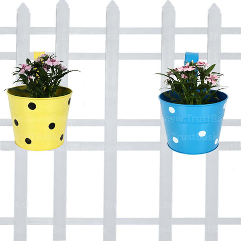 Best Indoor Plant Pots Online - Single Railing Planter (Set Of 2) - Blue & Yellow