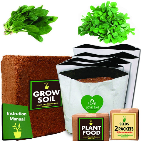 TrustBasket Economy Starter Grow Kit (Palak,Methi )