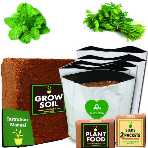 TrustBasket Economy Starter Grow Kit (Mint,Parsley)