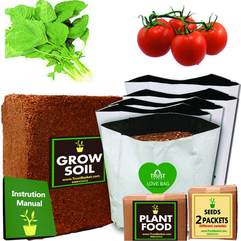 TrustBasket Economy Starter Grow Kit for Green Vegetables (Amaranthus ,Tomato)