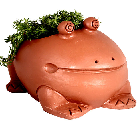 Toad Planter - Terracotta Handmade (FREE SHIPPING) - Trust Basket  - 1