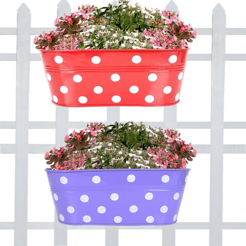 Best Indoor Plant Pots Online - Set Of 2-Dotted Oval Railing Planter-(Purple, Red)