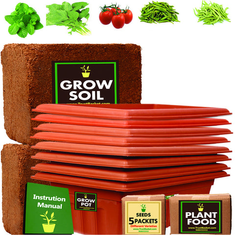 TrustBasket Super Saver Grow Kit (Mint, Amaranthus, Tomato Round, Green Chilli, France Beans)