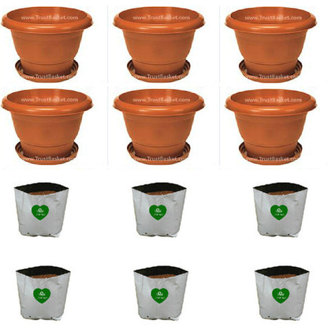 Set of 6-UV treated Plastic Pot(10 Inch) and Set of 6 Grow Bags - Trust Basket