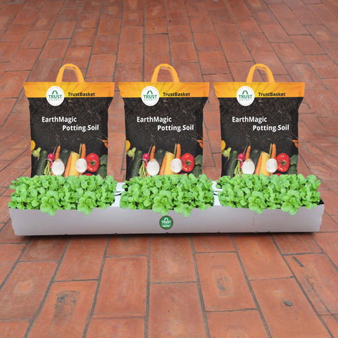 Vegetable gardening kits for Beginers - TrustBasket Flexible Grow Container for Leafy Vegetable with Earth Magic Potting Soil Fertilizer (15 KG)