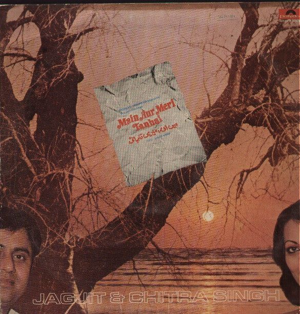 Main Aur Meri Tanhai -Bollywood Vinyl LP