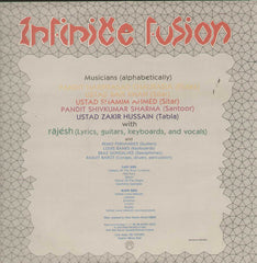 Infinite Fusion Instrumental Bollywood Vinyl LP