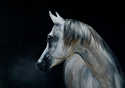 Fine Art Giclée Print 'Arabian Night'