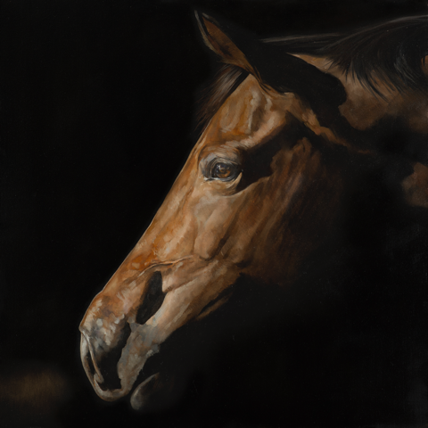 LIMITED EDITION Fine Art Giclée Print 'First Light'