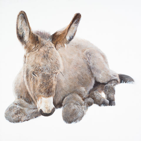 An Asal Beag (The Little Donkey) limited edition print
