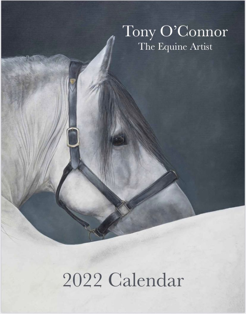 2018 Limited Edition Equine Art Calendar Front Cover 'Luminosity'