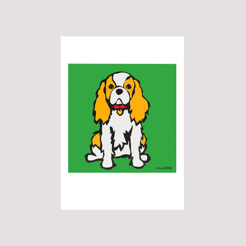 Cavalier King Charles Card