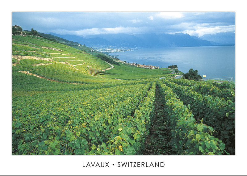 10192 - Lavaux, Switzerland