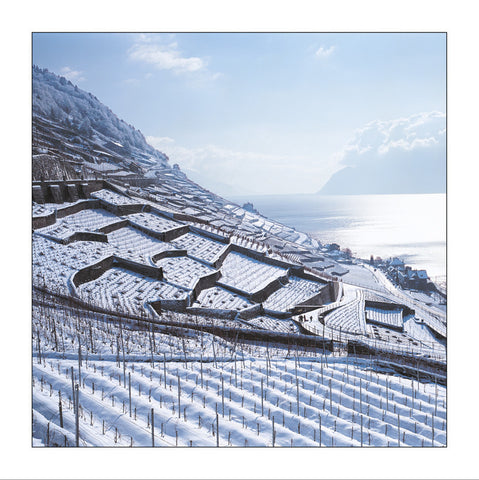 Lavaux, vignoble en terrasses, Switzerland