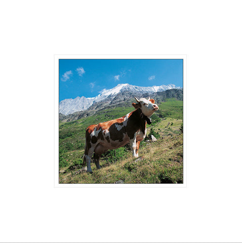 Greetings card: Switzerland