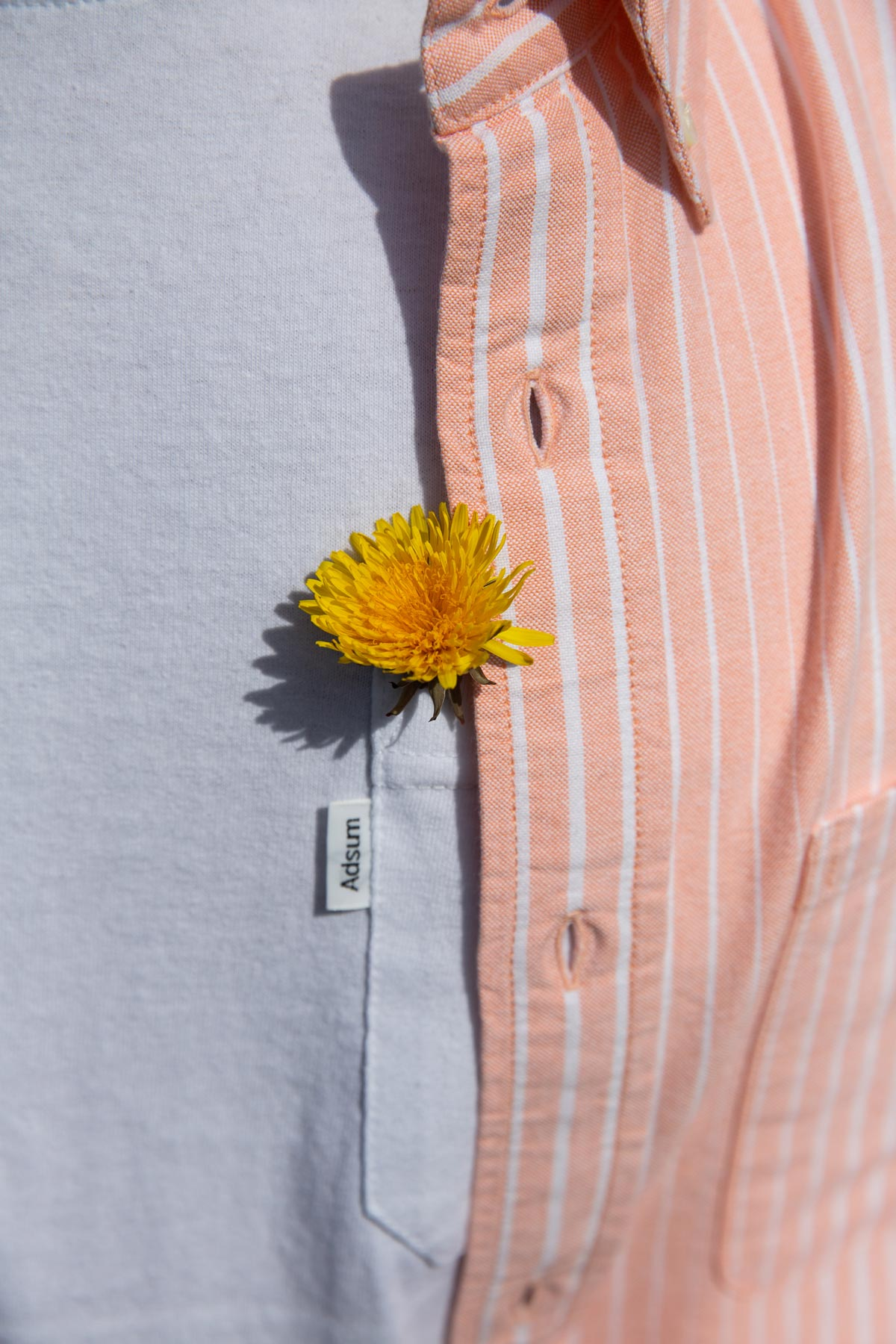 Sherbert Stripe Buttondown - Adsum
