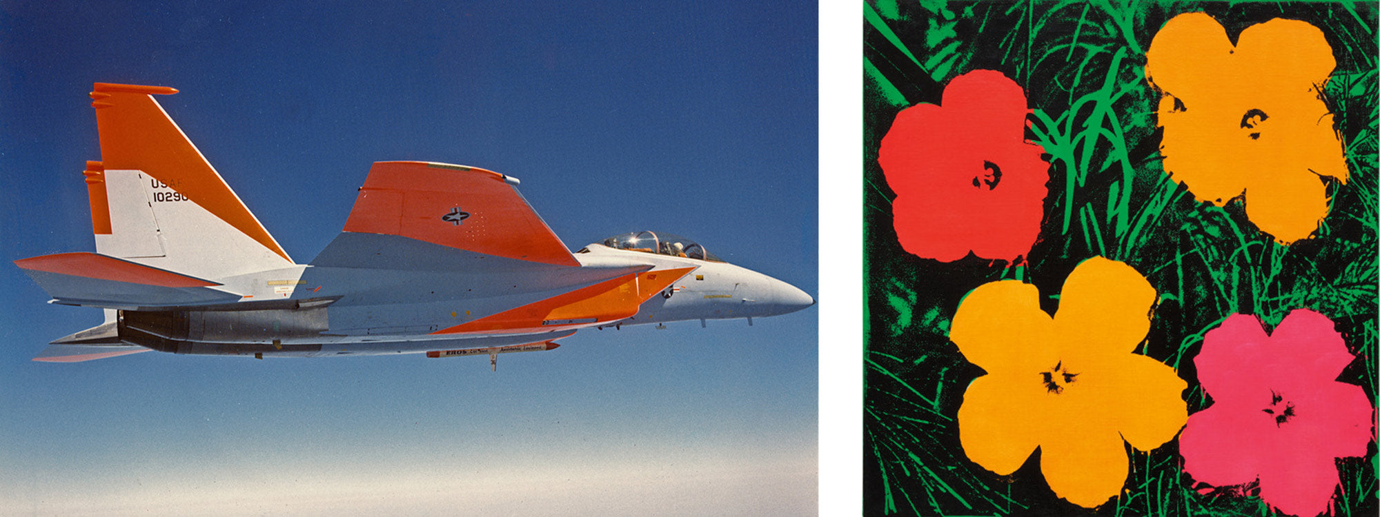 Day Glo color applications. Left: Used for testing a new F15. Right: Andy Warhol Flowers in Day Glo Paint.
