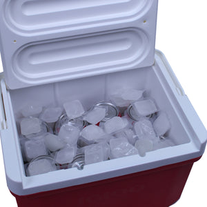 Cooler Cubes 5 lb Bag- Refreezable Ice Cubes