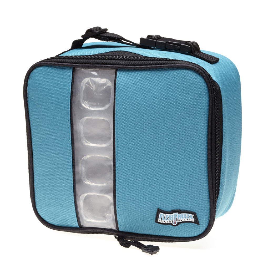 Lunch Box Cooler, Teal/Blue