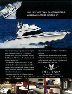 Bertram 36 Convertible Brochure