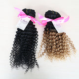 Kinky Curly Ombre Clip In Extensions (1B/27) - Low price cheap hair extensions