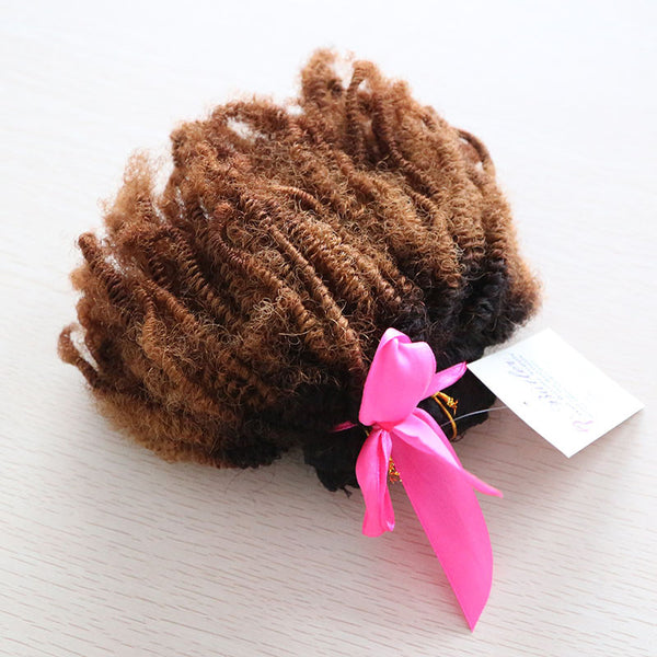Afro Kinky Curly Ombre Clip In Extensions (1B/30) - Low price cheap hair extensions