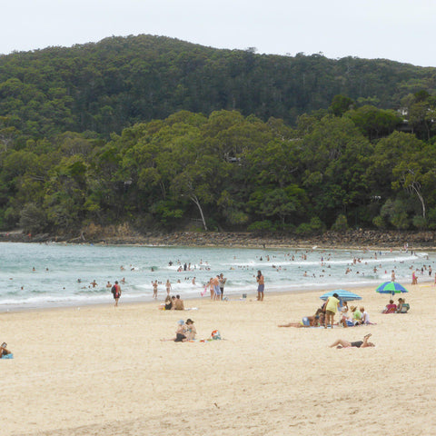 Beach on the Sunshine Coast. Image by Cockatoo Collection