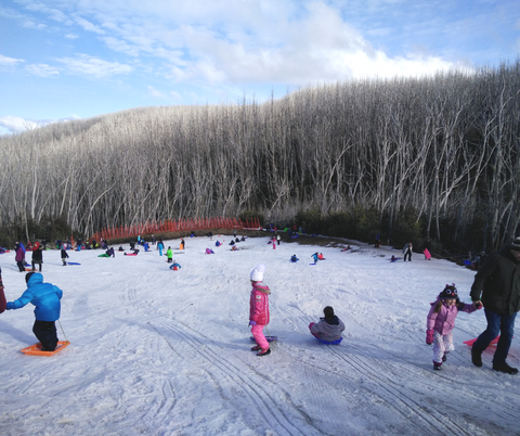 Lake Mountain Tobogganing