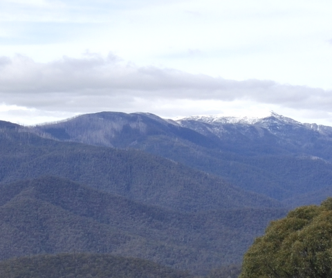 Alpine National Park Victoria - First glimpses of snow