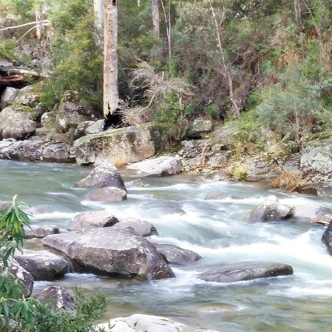 The Alpine National Park in Victoria - a waterfall by the road