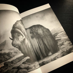 BECOMING THE FOREST 3 book (limited numbers)