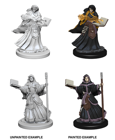 Human Female Wizard Unpainted Wizkids HD Mini