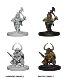 Dwarf Female Barbarian Wizkids HD Mini