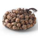 Wood Acorns - Bag of 75