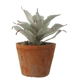 Faux Succulent in Terra Cotta Cement Pot - Out of the Woodwork Designs