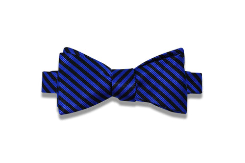 Diagonal Striped Blue Silk Bow Tie (self-tie)