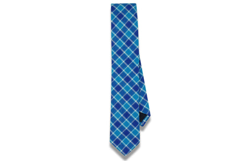 Edward Blue Cotton Skinny Tie