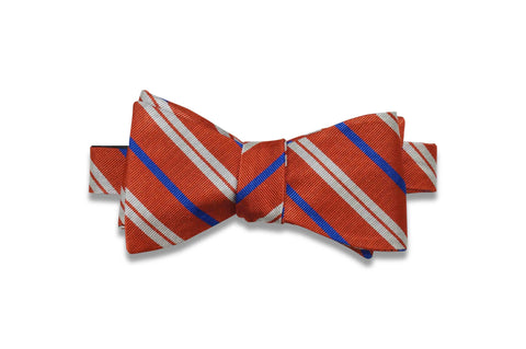 Orange Drive Silk Bow Tie (Self-Tie)