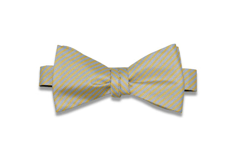 Roger Stripes Silk Bow Tie (Self-Tie)